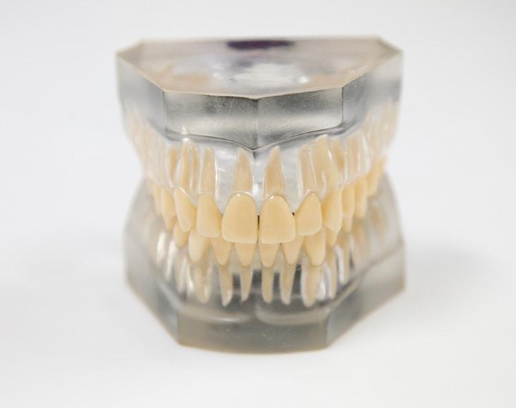 銀座アベニュー矯正歯科